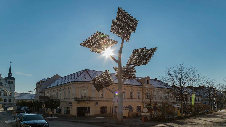 Symbolfoto Solarbaum Gleisdorf