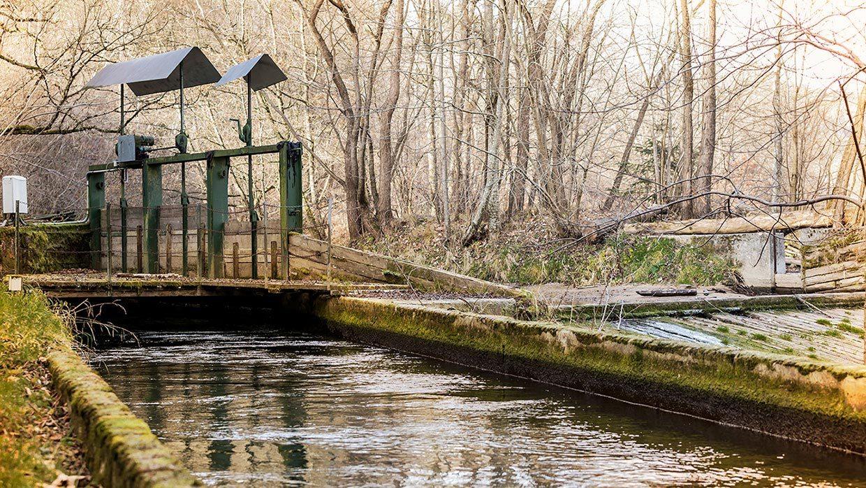 Foto vom Wasserkanal des Kraftwerk Edelsee